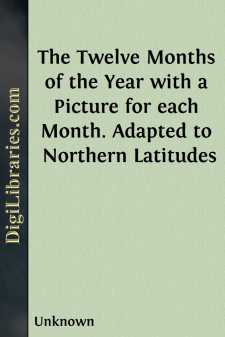 The Twelve Months of the Year with a Picture for each Month. Adapted to Northern Latitudes
