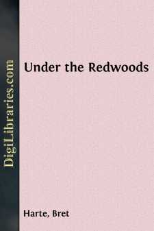 Under the Redwoods