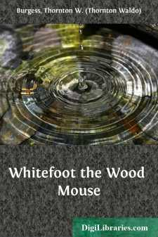 Whitefoot the Wood Mouse