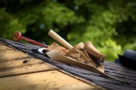 Roof repair expert
