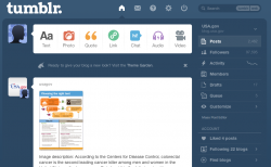 Screenshot of the Tumblr dashboard interface