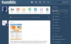 Screenshot of the Tumblr dashboard interface