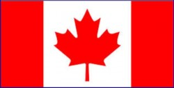 Canadian flag with a maple leaf in the center