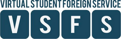 Department of State's Virtual Student Foreign Service logo