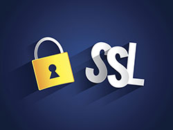 Creative abstract SSL