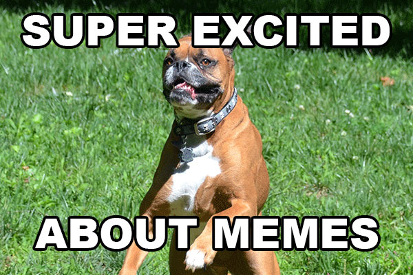 A Boxer (dog) appears to jump on a grassy area outdoors, with large black and white text added to the image that says: Super Excited About Memes