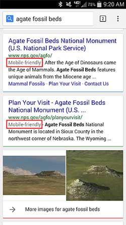 Search engine results indicating that an NPS park website is mobile-friendly