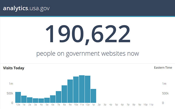A screen capture of a bar graph, showing that there were 190,622 people visiting government websites.