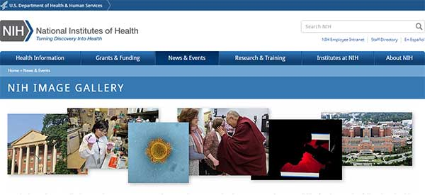 Screen shot of NIH Image Gallery web page