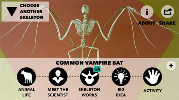 The Common Vampire Bat screen from the Smithsonian Skin and Bones iPhone app