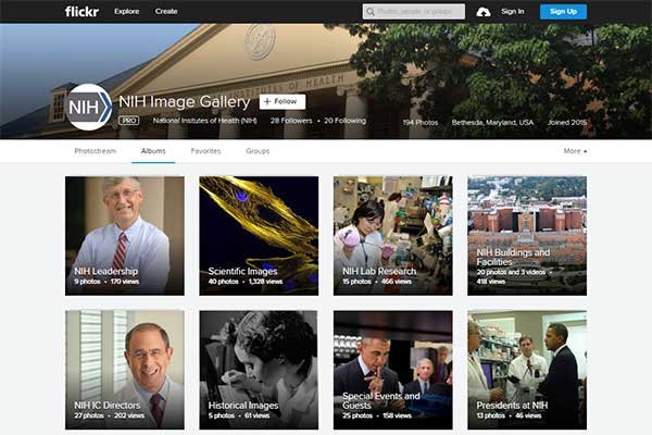 Screen shot of the new NIH Image Gallery on Flickr