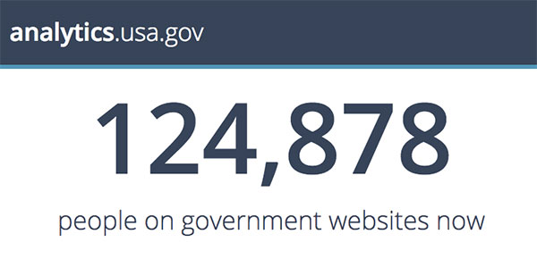 A screencapture from the analytics.usa.gov dahsboard showing 124,878 people were visiting U.S. government websites at that moment.