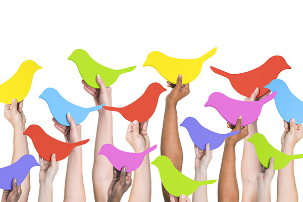 A diverse group of hands hold up social media bird shapes of various bright colors.