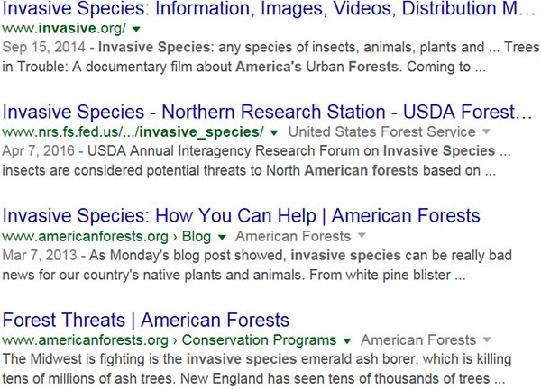 Screen capture of search results for: invasive species American forests