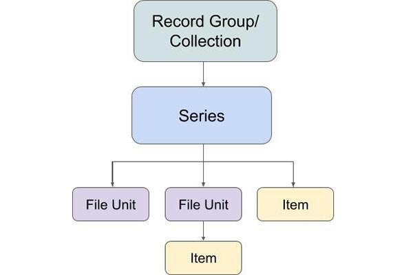 A records hierarchy flowchart.