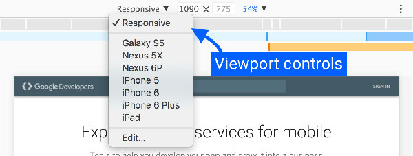 Viewport Controls.