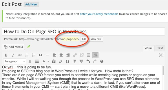 On-Page SEO - The Slug