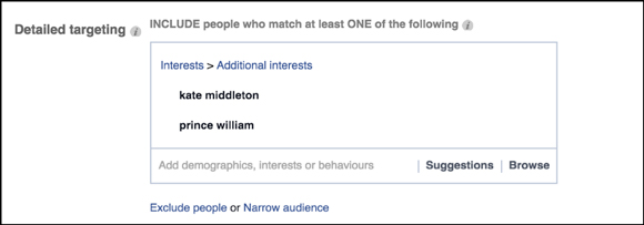 facebook-flex-targeting-img6