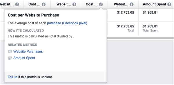 Cost Per Website Purchase
