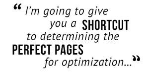 I'm going to give you a shortcut to determining the perfect pages for optimization...""