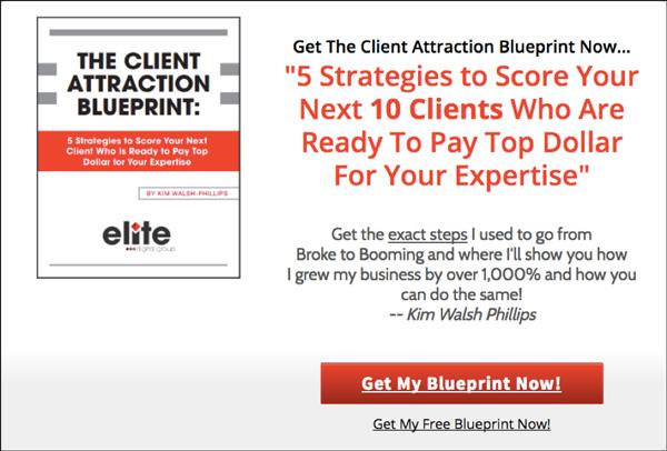 """Client Attraction Blueprint"" landing page"