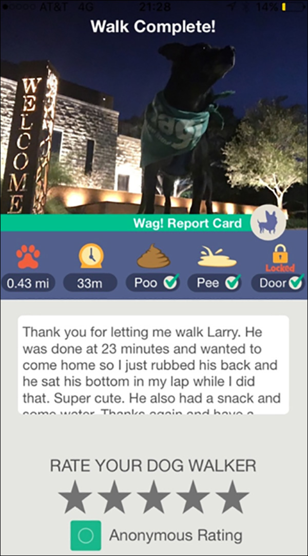 Wag! report card of the walk