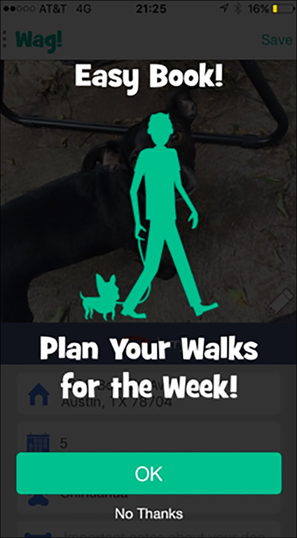 Book a week of walks with Wag!