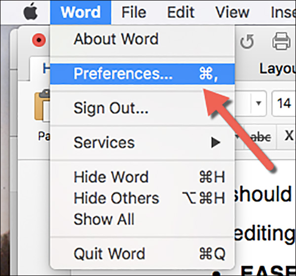 Click on the Word drop-down menu and then click on Preferences