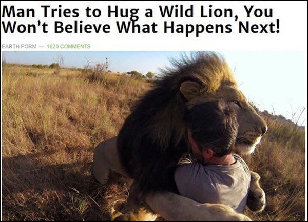 "An example of clickbait: ""Man Tries to Hug a Wild Lion, You Won't Believe What Happens Next!"""
