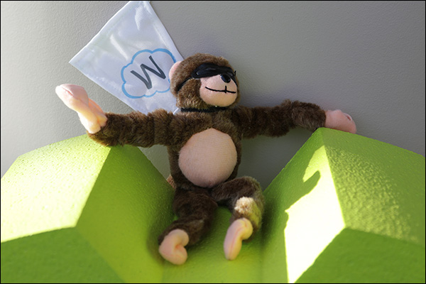 Maropost Monkey
