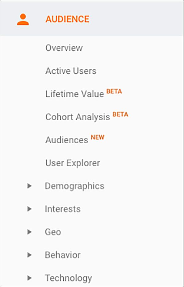 The Audience Menu in Google Analytics