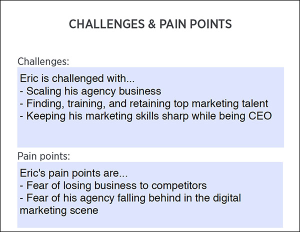 Customer Avatar Worksheet: Challenges and Pain Points