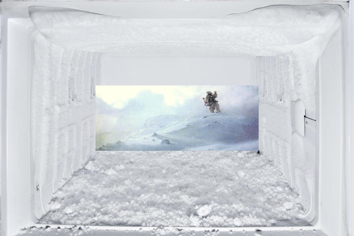 How To Thaw A Freezer Digital Trends