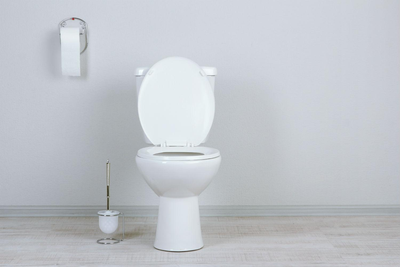 how to unclog a toilet digital trends. Black Bedroom Furniture Sets. Home Design Ideas