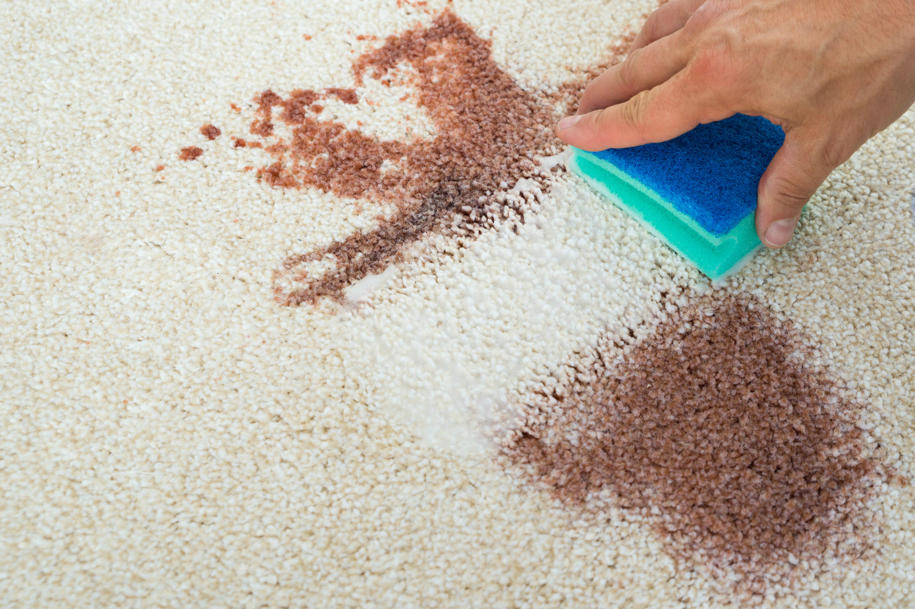 How To Remove Bloodstains Digital Trends