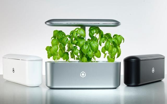 Indoor Smart Garden Uses Artificial Intelligence To Grow