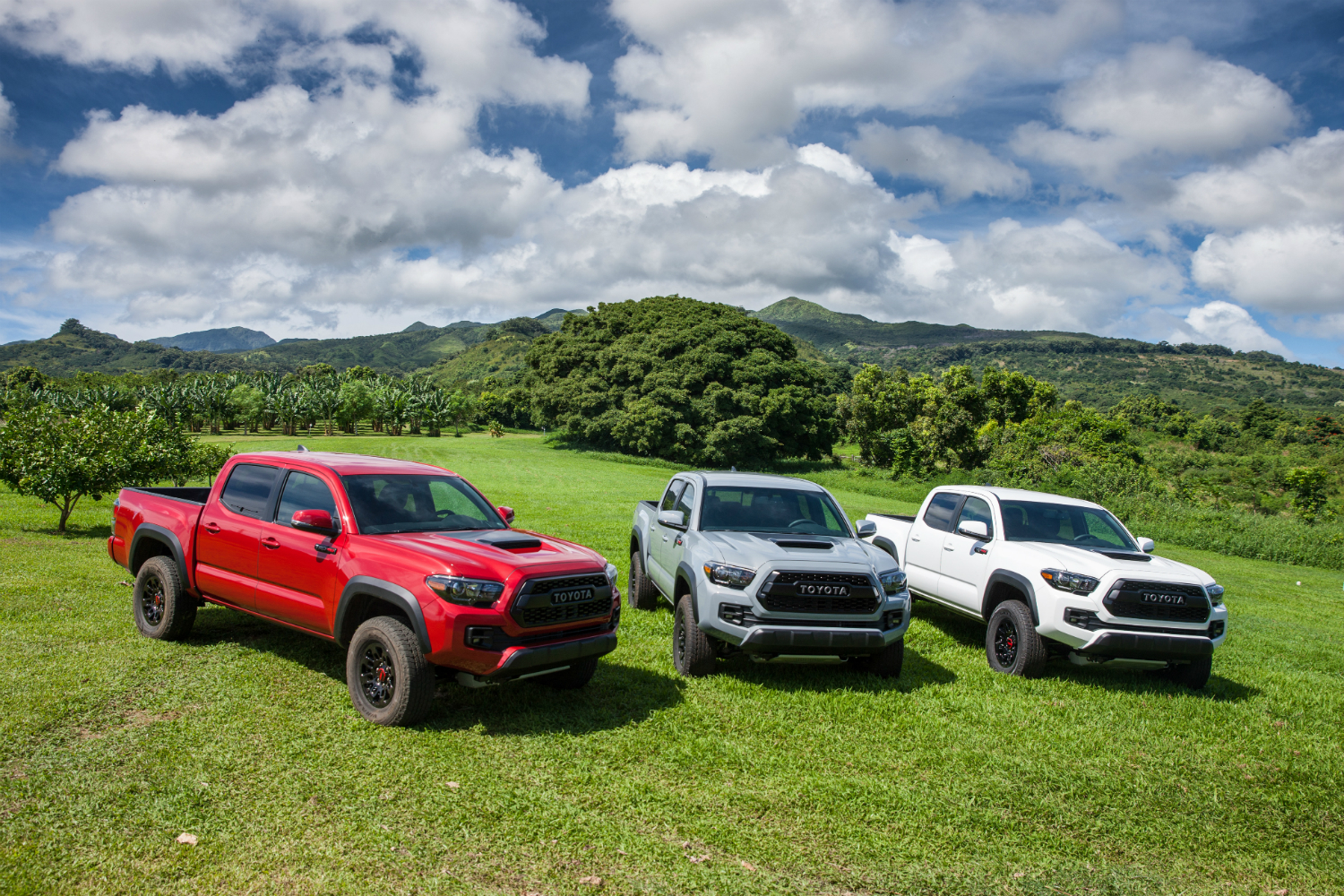 2018 toyota tacoma release date prices specs and features. Black Bedroom Furniture Sets. Home Design Ideas
