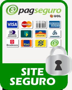 banner-pagseguro1