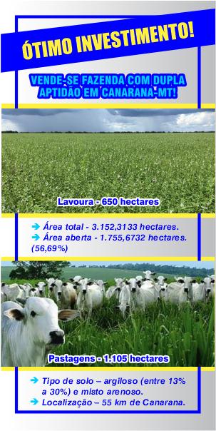 Banner Site AGR – Fazenda 1 (1)