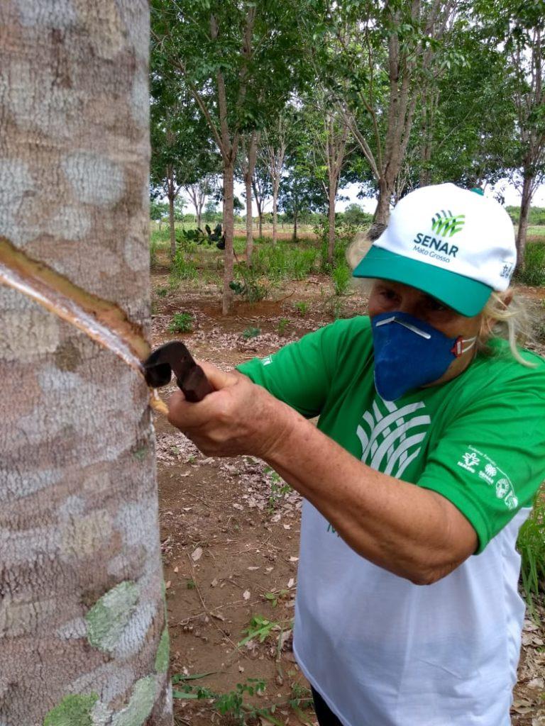 Seagri em parceria como Senar, promoveu entre os dias 07 a 11 de dezembro, no Assentamento Suyá, o curso Sangria em Seringueira.