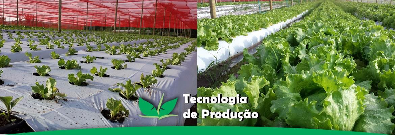 tecnologia-de-producao1