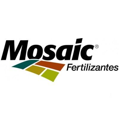 https://s3.amazonaws.com/dinder.com.br/wp-content/uploads/sites/664/2021/01/Mosaicc.jpg