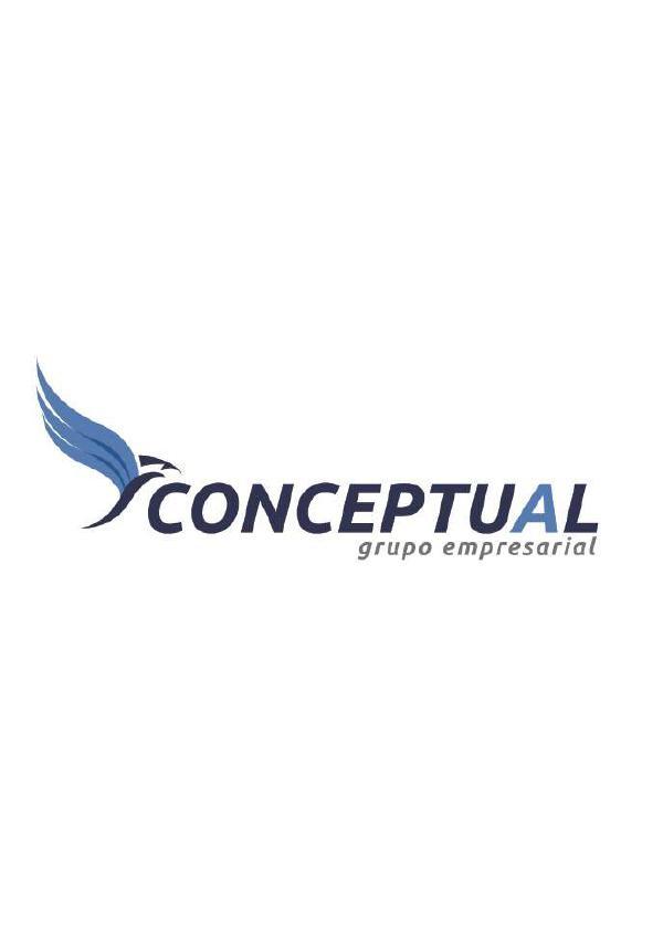Conceptualgrupoempresarial