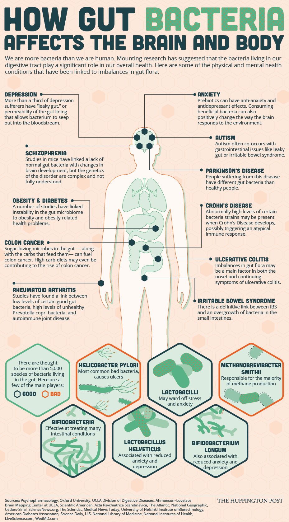 Immune System And Gastrointestinal >> Taking Care Of Your Gut Microbiome