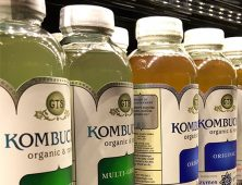 Crazy for Kombucha