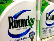 Is Glyphosate Safe?