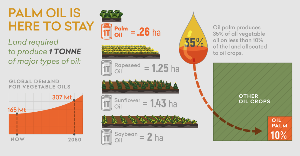 palm oil is an efficient crop
