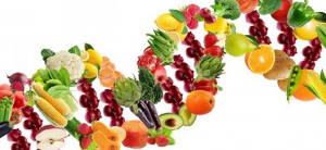 fruit vegetable dna