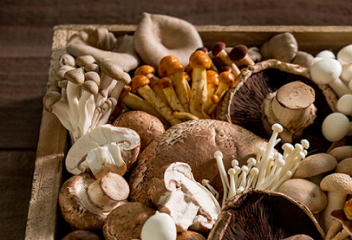 Boosting Your Health with Mushrooms