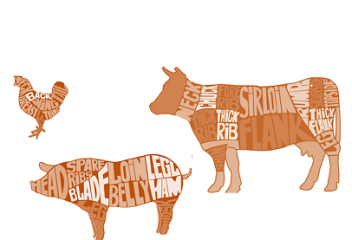 The Meat Industry & Shifting Consumer Behavior